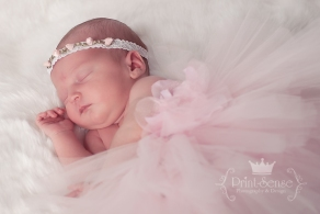 newborn girl photo