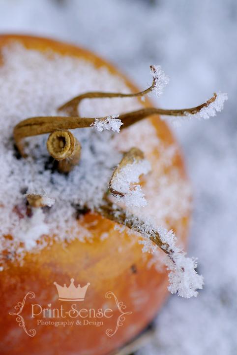 hoar frost on tomato