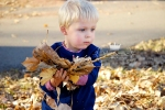 Creative fall photos