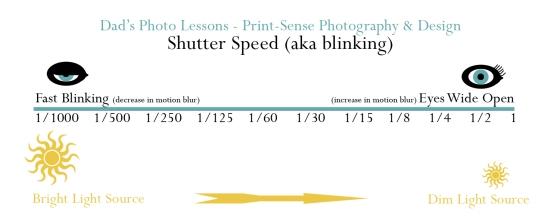shutter visual
