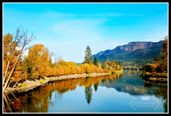 Shuswap River Enderby British Columbia Fall Colors