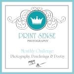 Px3 Monthly Challenge, Print Sense Photography