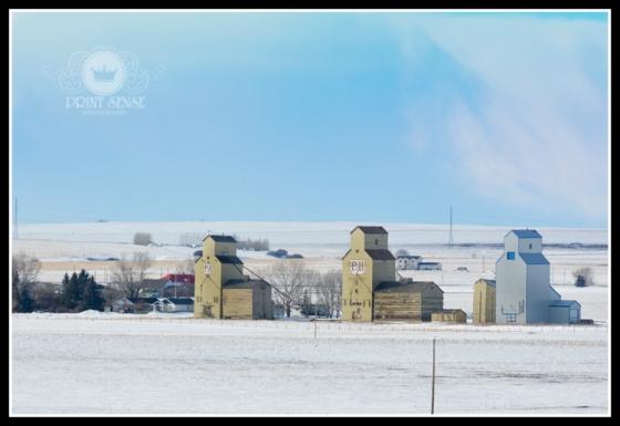 Grain Elevators, Alberta, Print Sense Photography